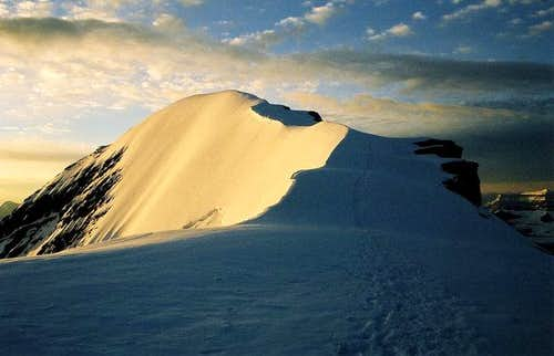 Mount Athabasca Summit Ridge