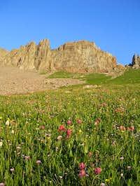 Grassy slopes make an easy...