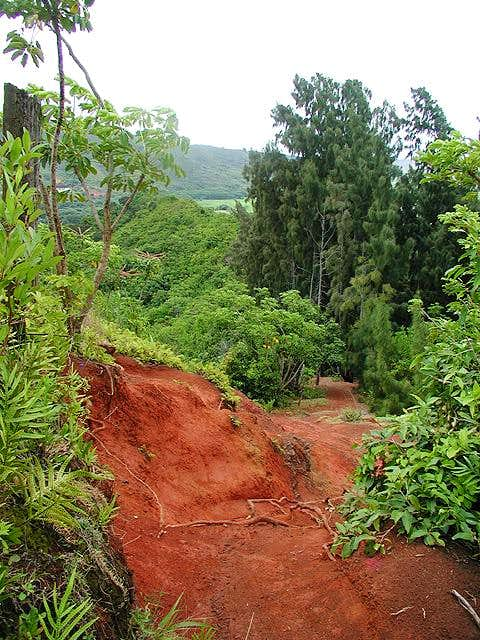 Erosion has exposed a lot of...