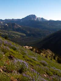 Castle Peak from near the...