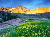 Dromedary peak from the south...