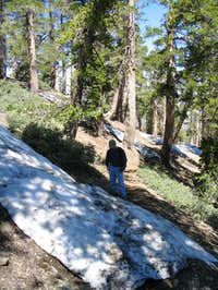 Snow On Trail: lots of snow...