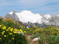 Snowmass Mountain from...