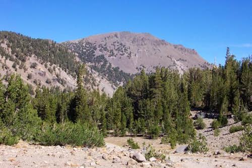 Mt. Rose viewed from the...
