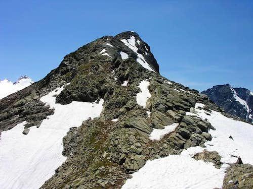 South slope of punta de la...
