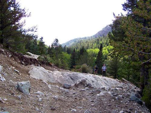 Lake Como Road at a large...