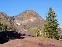 Dromedary Peak from upper...