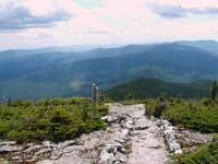 The Long Trail from Lincoln Gap