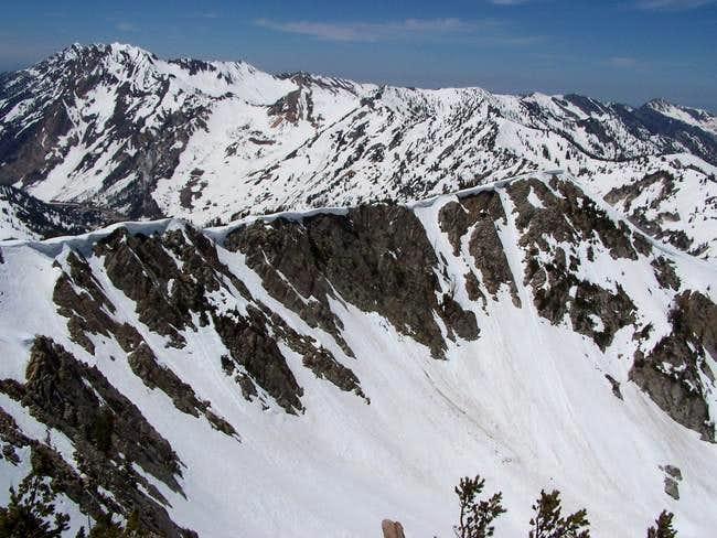 East aspect chutes of Mt....
