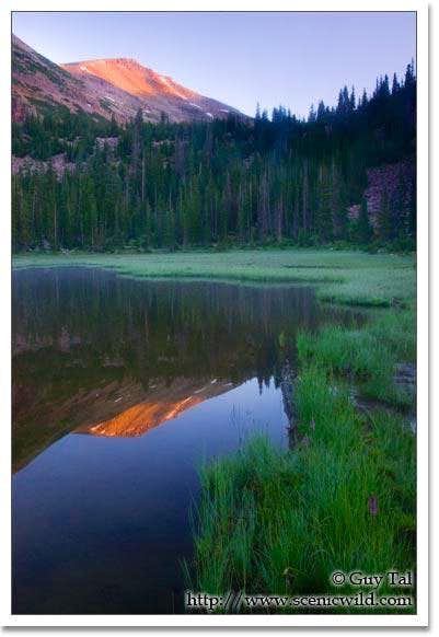 Mt. Agassiz from Morat Lake