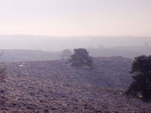 Frosty mist over Veluwe Hills