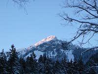 Scheinberg - January 2004 -...