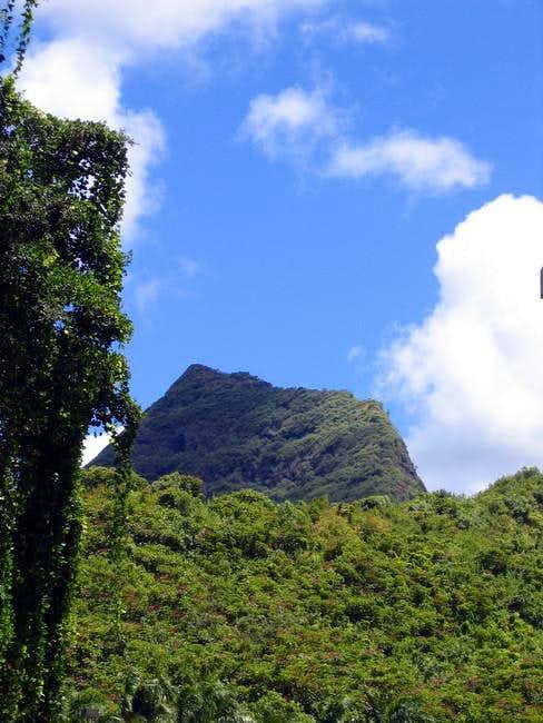 Mount Olomana from near the...