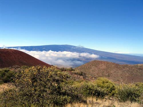 Mauna Loa above the clouds...