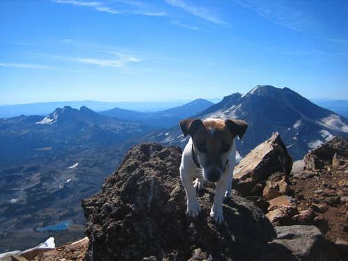 Lucy on the Summit of Middle...