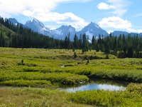 The meadows at Chester Lake,...