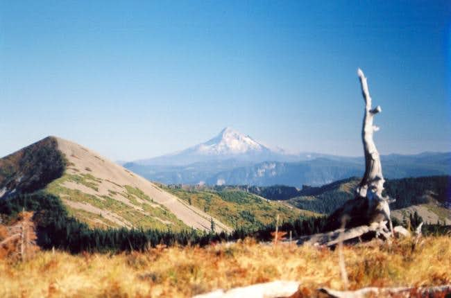 Fall '03 view of Little Baldy...