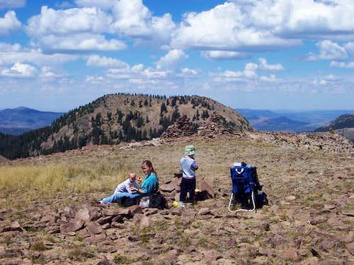 The summit of Sand Mountain,...