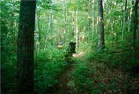 Hiking on the Wolf Ridge...
