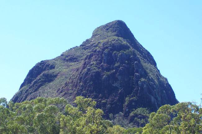 Beerwah Summit Track