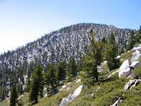 Jean Peak--Mt San Jacinto,...