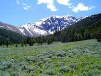 Pahsimeroi View