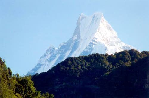 Machhapuchare summit seen...