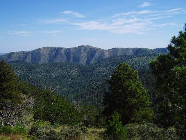 Mt. Pratt from the Bush...
