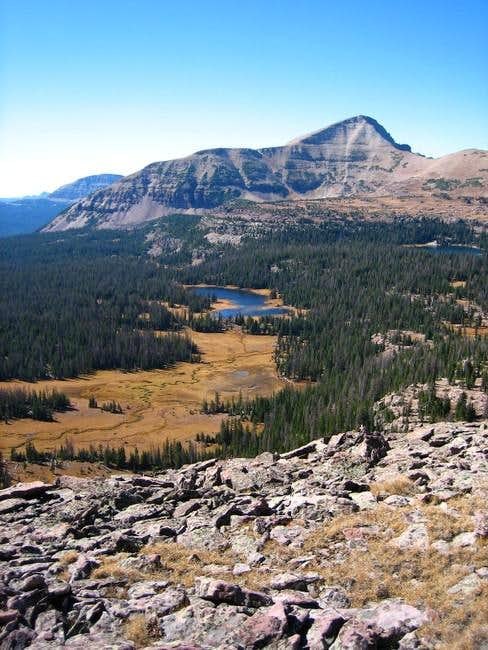 Mount Agassiz above...