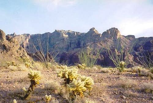 The Kofa Mountains behind a...