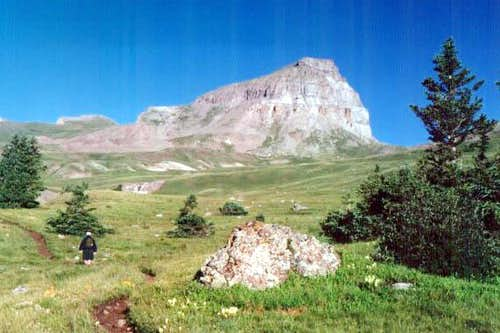 Uncompahgre Peak trail 7/25/01