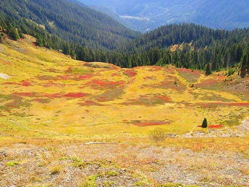 Colorful meadows on the east...