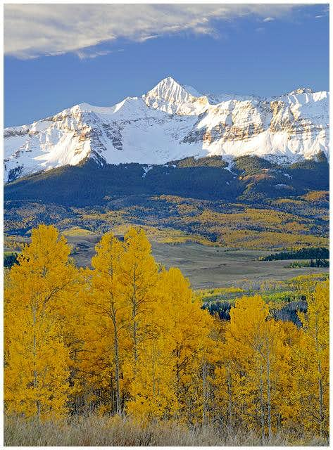 Autumn gold and fresh snow...