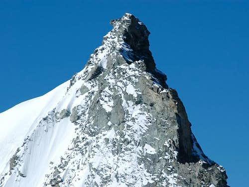 Weisshorn north ridge: Grand...