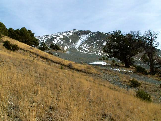 Southwest Slopes