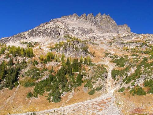 Seven Fingered Jack from our...