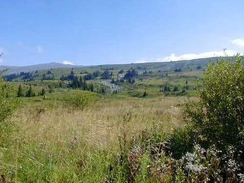 This is a view of Vitosha's...