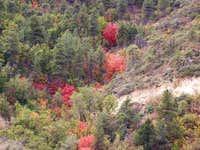 Vibrant October colors.