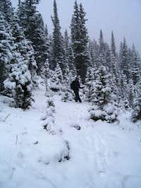 South Rawah Peak, North Fork...