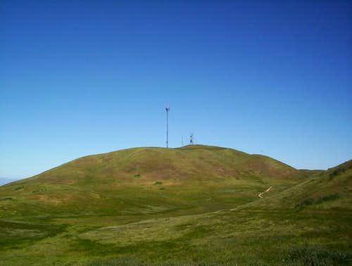 Mount Allison