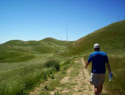 Blue sky, green grass, and no...