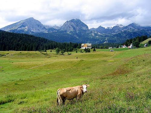 Alpine scenery of Durmitor