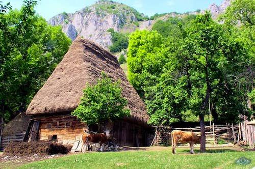 house in Trascau mountains