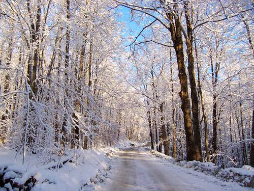 Camel\'s Hump road in January.