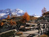 Fall colors in the Gran...