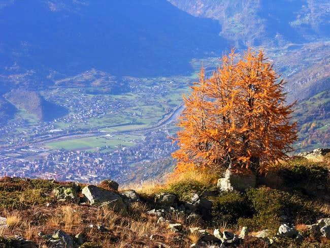 Climbing Becca di Viou: in...