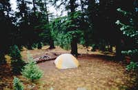 Many good tent spots in the...