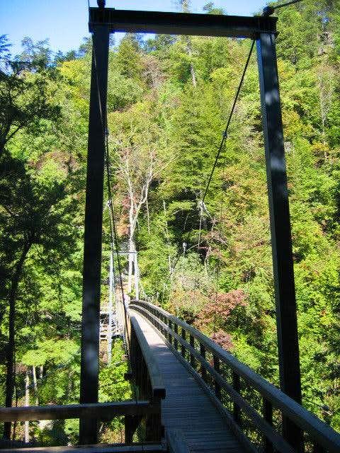 The suspension bridge just...