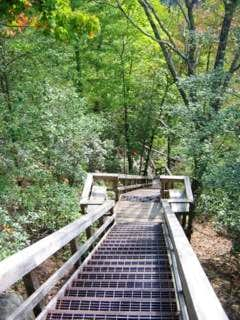 The boardwalk/staircase that...