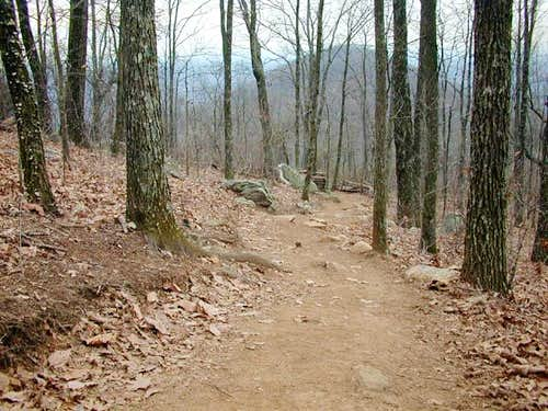 Trail leading down Kennesaw...